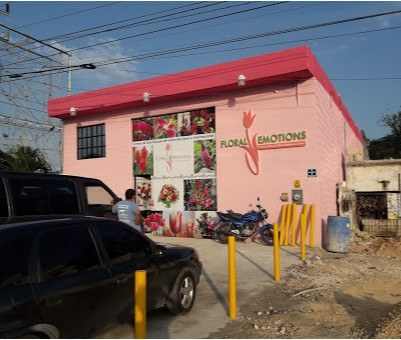 Vinilo Fachada Cancun